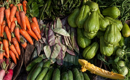 India's agriculture export to Bhutan shows declining trend 1