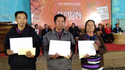 Curtains come down on Tamenglong orange festival in Manipur 1