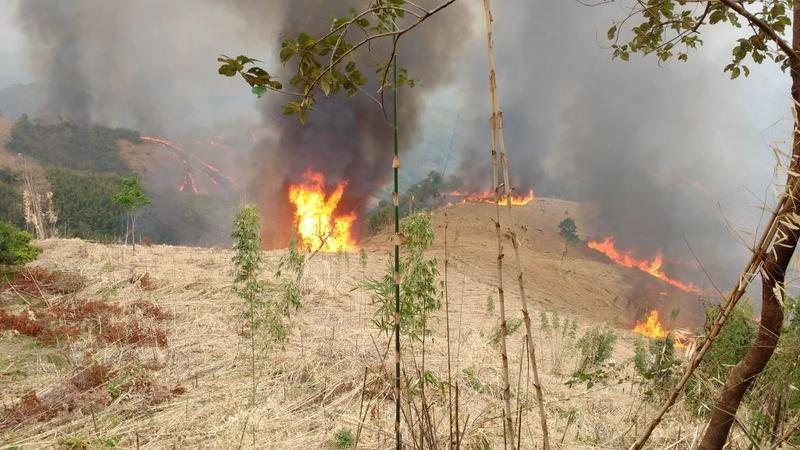 Burning of jhum cultivation