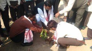 Green Mission of Assam's Bajali plants trees in Gujarat 2