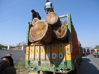 Huge consignment of smuggled timbers seized on Imphal-Moreh road in Manipur 1