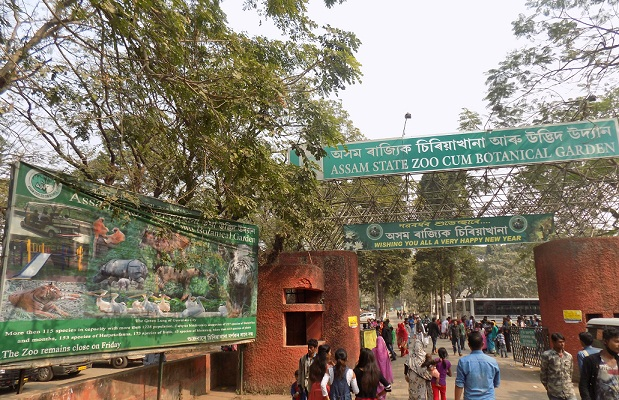 Guwahati: Nature learning camps and trekking for school children 1