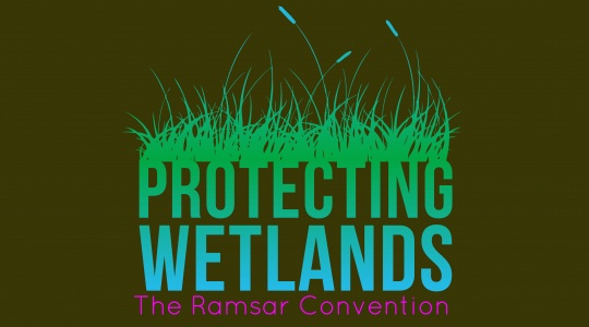 World Wetlands Day: A glimpse of three Ramsar sites of Northeast India 1