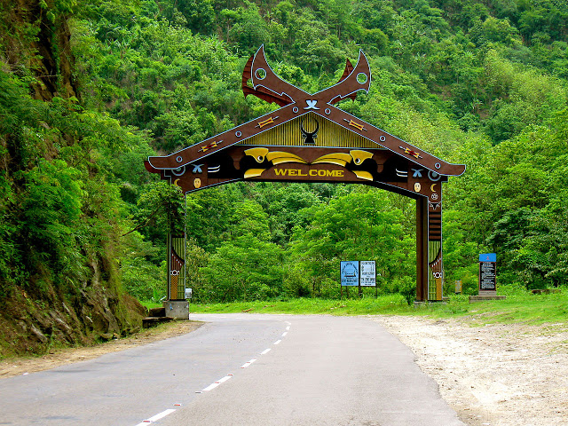 Nagaland forest cover
