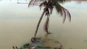 Tale of woes for people residing along river bank in Tripura 1