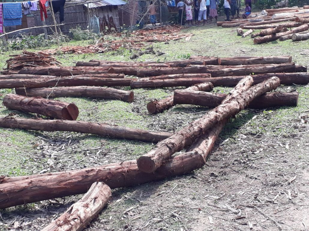 The seized timber logs.