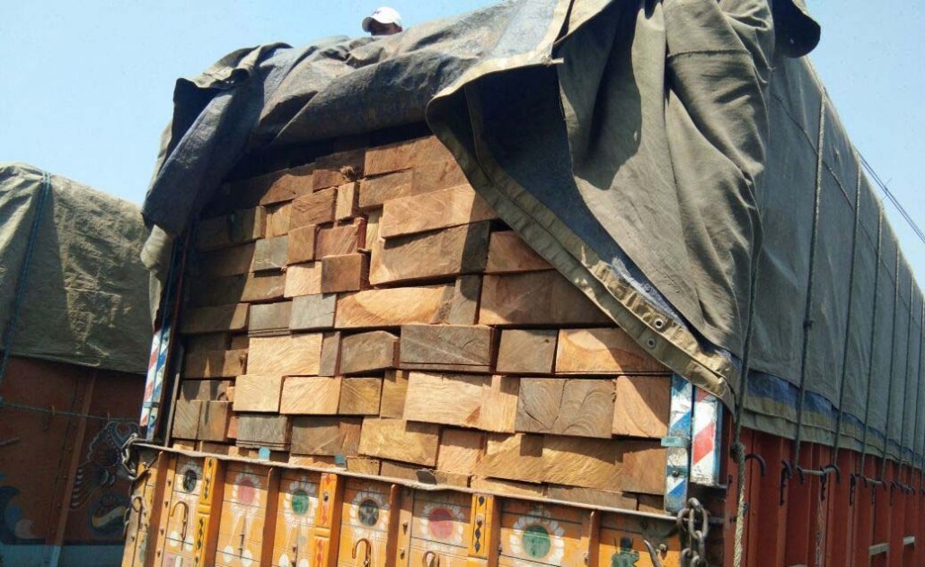 The timber-laden trucks.(Image for representational only)