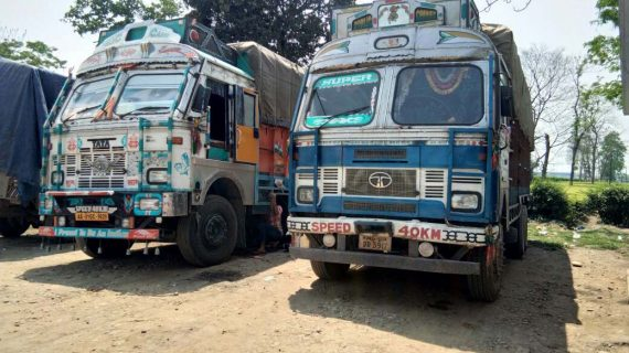The timber-laden trucks seized at Doomdooma.