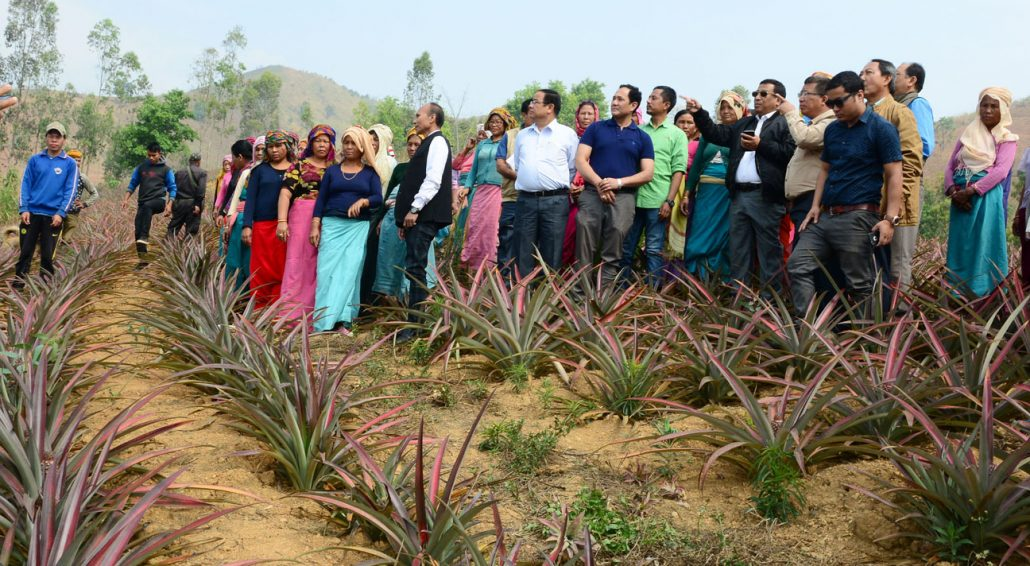 Horticulture and Soil Conservation Minister Thounaojam Shyamkumar during his visit to a farm.