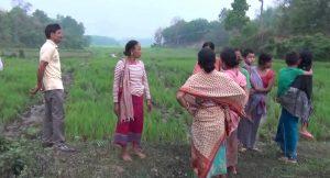 Elephant menace: Villagers in Tripura's Khowai demand compensation for losses 2