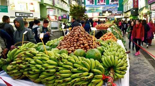 organic market sikkim