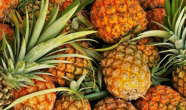 tripura pineapple