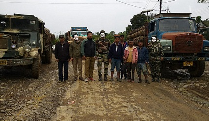 The seized timber-laden trucks. Source - Twitter