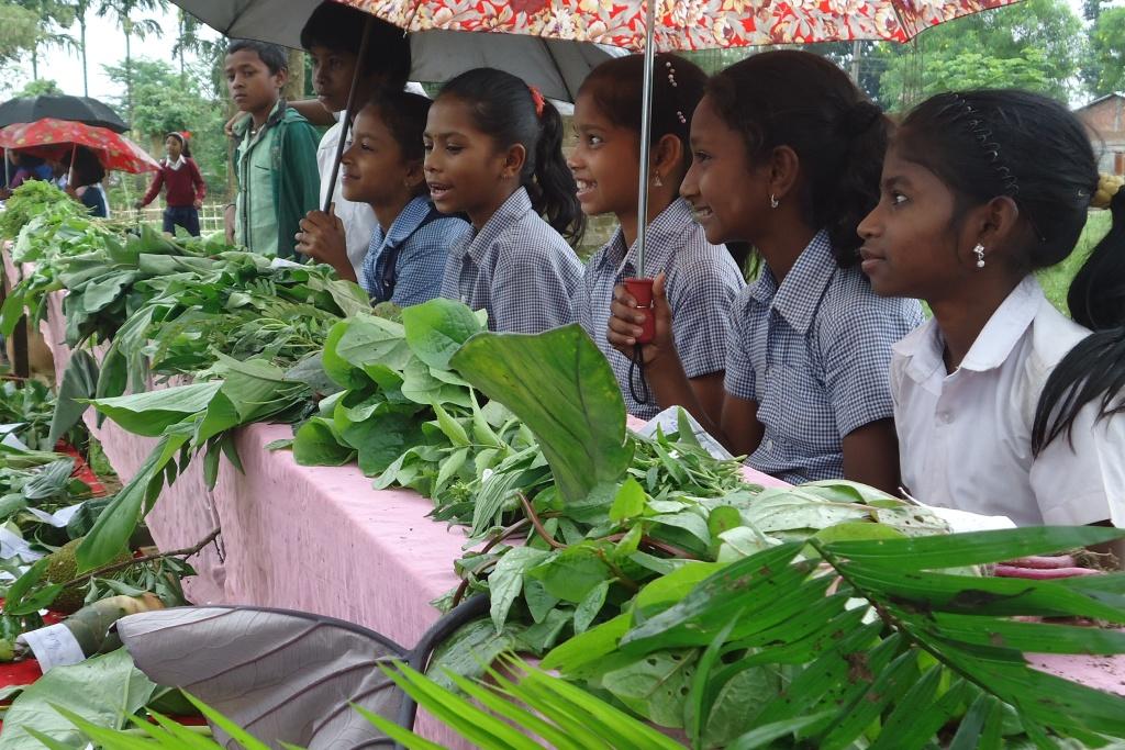 tea garden children