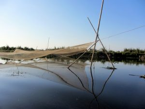 Assam: A wetland too popular for its own good 2