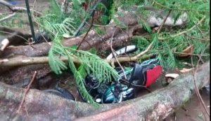 Thunderstorm kills two in Karbi Anglong 3