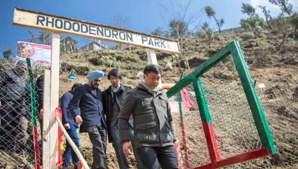 Rhododendron Park in Tawang