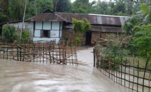 Assam: Flood waters inundate over 100 houses in Howraghat 1