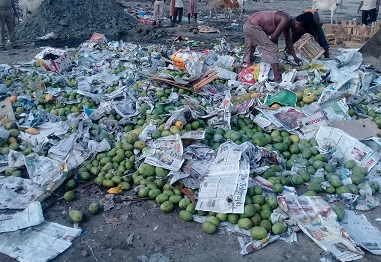 Seized mangoes being destroyed. Northeast Now Representational image
