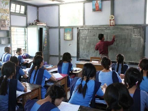 primary school teachers
