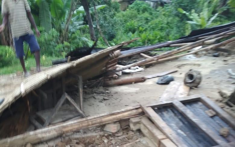 bokakhat elephant damage