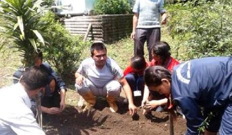sikkim organic farming