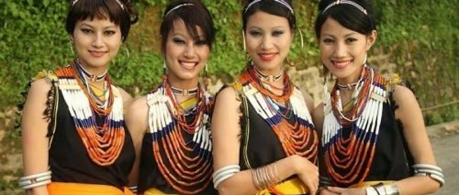 20 reasons why a visit to Northeast India is a must 10