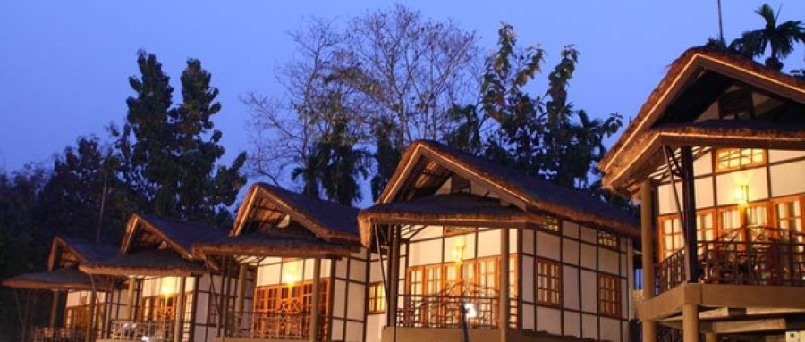 Top 10 best places to stay in Kaziranga 2