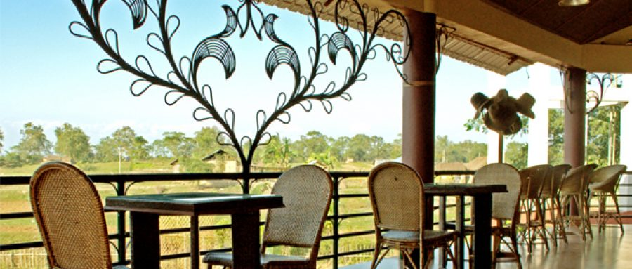 Top 10 best places to stay in Kaziranga 10