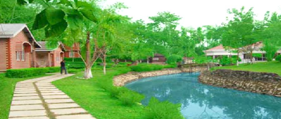 Top 10 best places to stay in Kaziranga 8