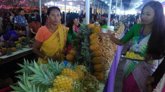manipur pineapple new