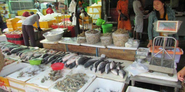 a fish stall at mandalay township in myanmar (5)