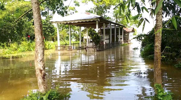 Floods wreak havoc in Majuli