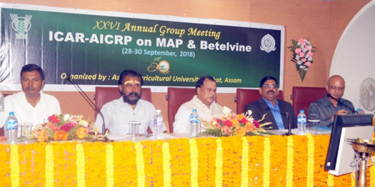 AAU VC for streamlining of Medicinal and Aromatic Plants sector