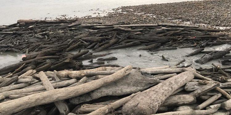 arunachal river drying