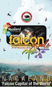 falcon fest