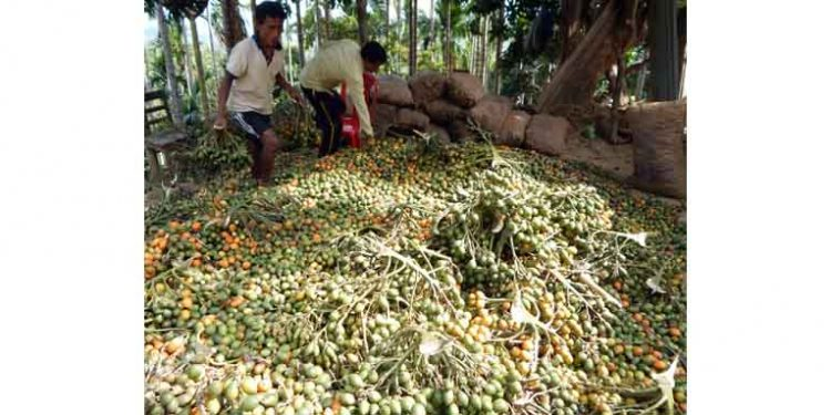 North Tripura village solely dependent on agricultural products for livelihood due to govt apathy