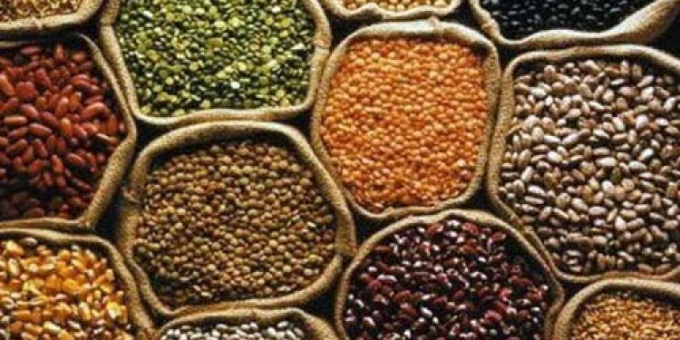 Tripura develops three new varieties of pulses