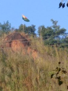 ulfa flag 1