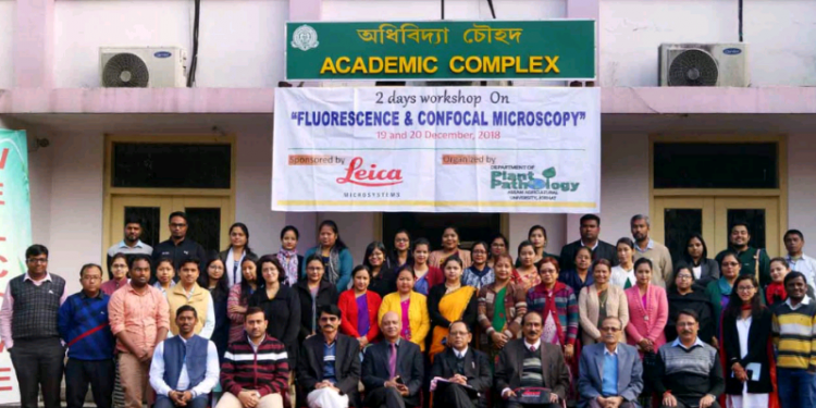 Participants in the workshop at the AAU. Photo