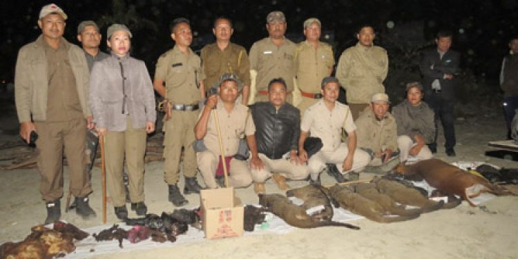Wildlife-meat-carcasses-seized-in-Midpu