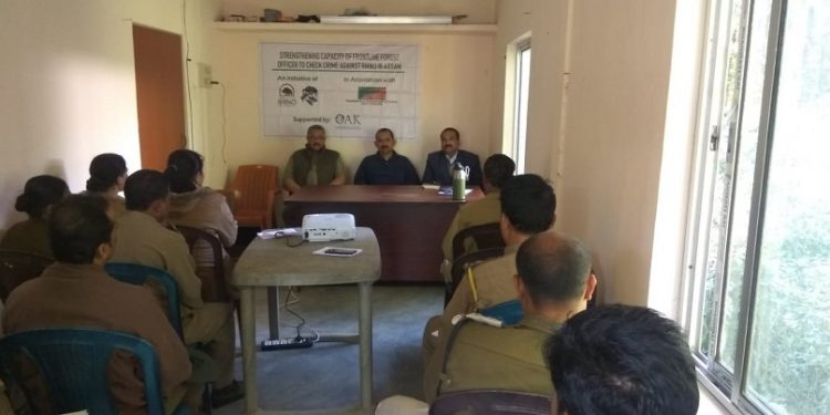 Assam: Local NGO trains forest staff to tackle wildlife crimes