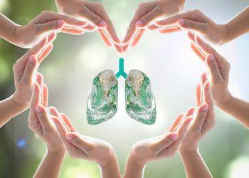 Tuberculosis (TB)