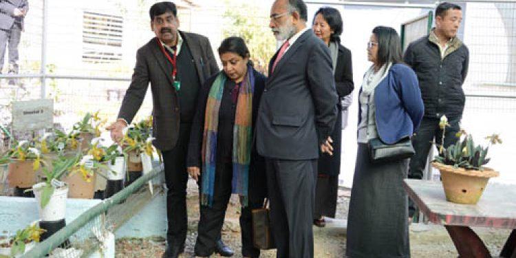 Union Minister KJ Alphons to inaugurate Swadesh Darshan project in Gangtok
