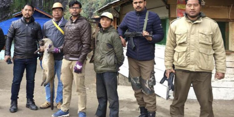 Arunachal: Two caught for hunting wildlife; civet rescued