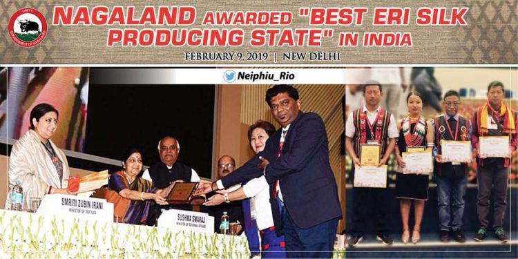 Nagaland awarded