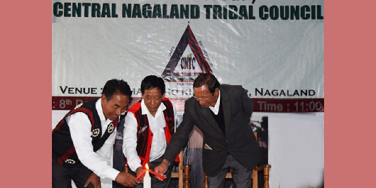 Nagaland Tribes Council