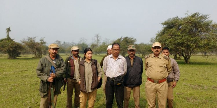 The writer during 2017 elephant census (1)