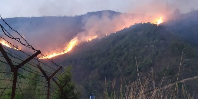 Assam Rifles prompt action saves village from wild fire (4)