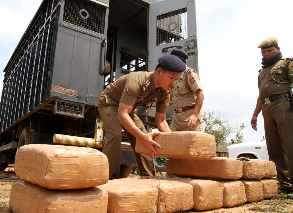 Tripura Police destroy cannabis and drugs worth Rs 7 crores 1